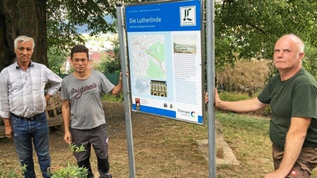 Foto Schild an der Lutherlinde